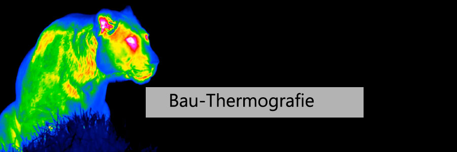 Wärmebild-Thermografie-Kameras